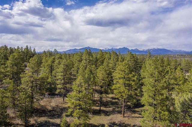 390 Engleman Place, Pagosa Springs, CO 81147 (MLS #782961) :: The Howe Group | Keller Williams Colorado West Realty