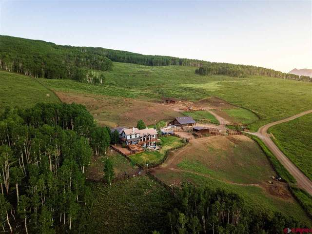 1494 Red Mountain Road, Almont, CO 81210 (MLS #783021) :: The Howe Group | Keller Williams Colorado West Realty
