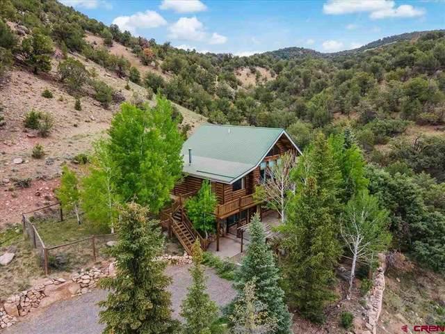 25128 Highway 550, Ridgway, CO 81432 (MLS #783188) :: The Howe Group   Keller Williams Colorado West Realty