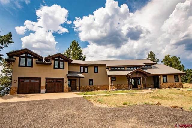 565 Skyline Drive, Pagosa Springs, CO 81147 (MLS #783759) :: The Howe Group | Keller Williams Colorado West Realty