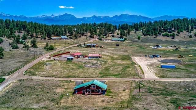 55 Dandelion Drive, Pagosa Springs, CO 81147 (MLS #783777) :: The Howe Group   Keller Williams Colorado West Realty
