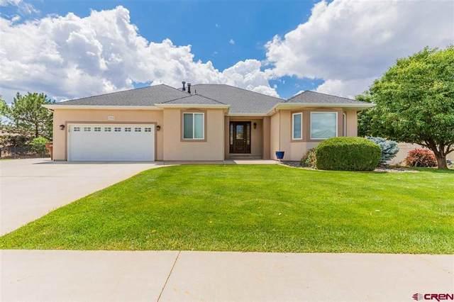 2904 N Lost Creek Road, Montrose, CO 81401 (MLS #783822) :: The Howe Group   Keller Williams Colorado West Realty