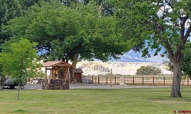 12495 Running Deer Road, Eckert, CO 81418 (MLS #783992) :: The Howe Group | Keller Williams Colorado West Realty