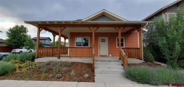 460 Clear Spring Avenue, Durango, CO 81301 (MLS #784043) :: Durango Mountain Realty