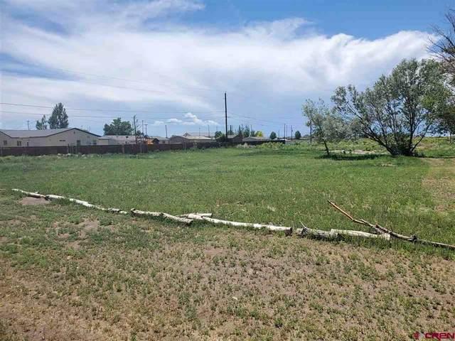 TBD Edison Avenue, Alamosa, CO 81101 (MLS #784183) :: The Howe Group   Keller Williams Colorado West Realty