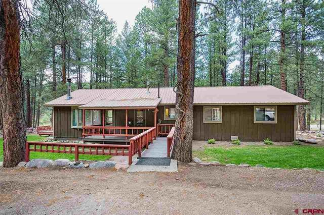 12252 County Road 501, Vallecito Lake/Bayfield, CO 81122 (MLS #784557) :: The Howe Group | Keller Williams Colorado West Realty
