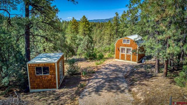 38 Carey's Court, Pagosa Springs, CO 81147 (MLS #784715) :: The Howe Group | Keller Williams Colorado West Realty
