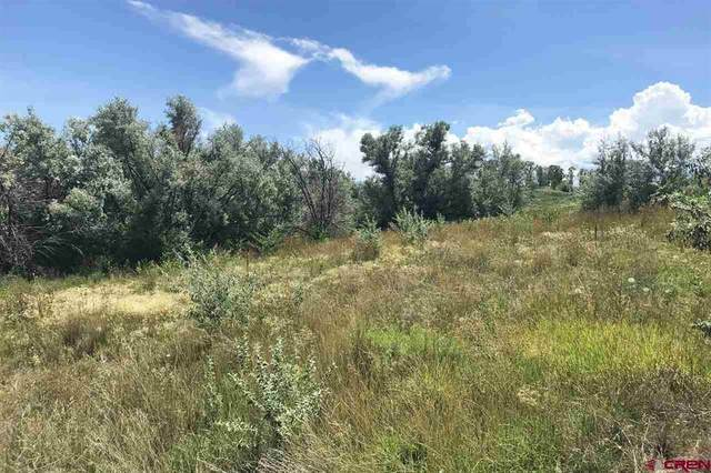 Lot 3 5950 Road, Montrose, CO 81403 (MLS #784893) :: The Howe Group | Keller Williams Colorado West Realty