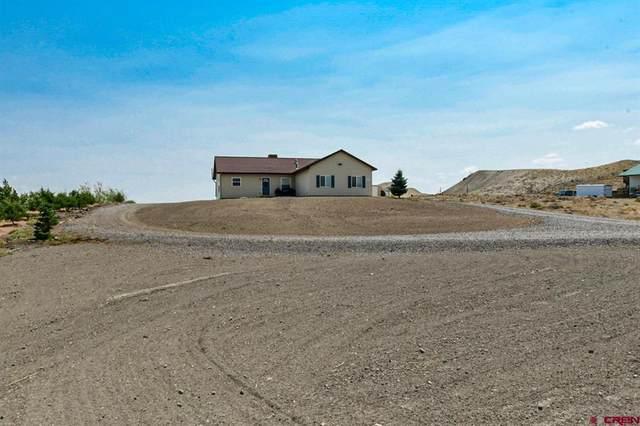 10321 Kings View Road, Austin, CO 81410 (MLS #785550) :: The Howe Group   Keller Williams Colorado West Realty