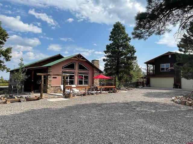 106 Columbine Lane, Ridgway, CO 81432 (MLS #785962) :: The Howe Group | Keller Williams Colorado West Realty
