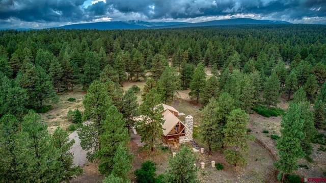 1956 Backcountry Drive, Pagosa Springs, CO 81147 (MLS #786141) :: The Howe Group   Keller Williams Colorado West Realty