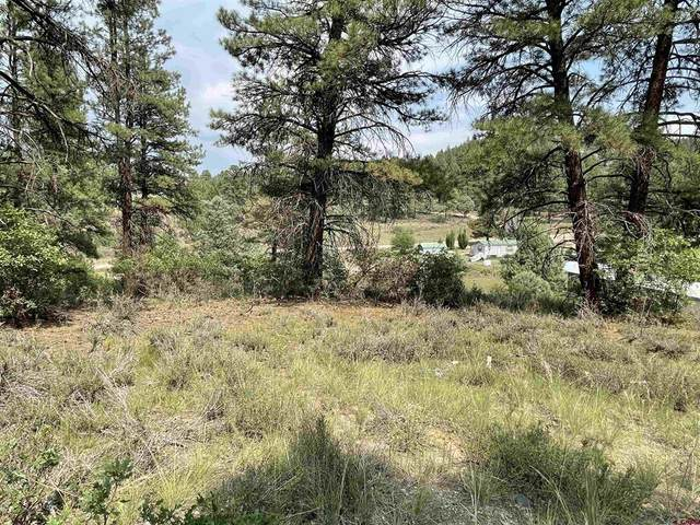 522 Dyke Blvd., Pagosa Springs, CO 81147 (MLS #786155) :: The Howe Group | Keller Williams Colorado West Realty