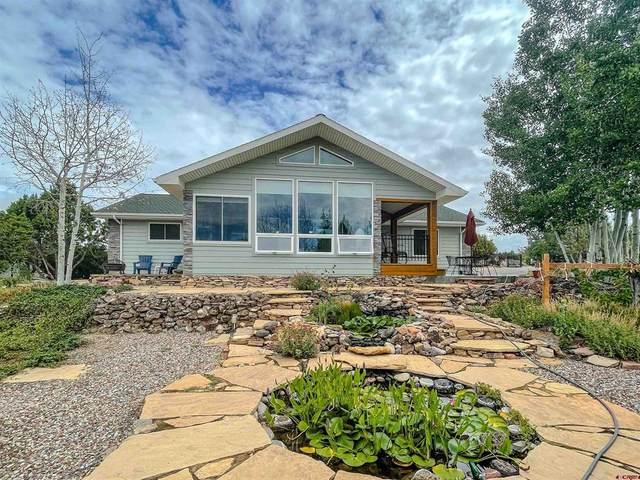 24645 Sorrento Lane, Cedaredge, CO 81413 (MLS #786323) :: The Howe Group   Keller Williams Colorado West Realty