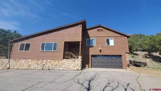 10839 County Road 213, Durango, CO 81303 (MLS #786411) :: Durango Mountain Realty