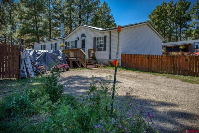 38 Canyon Circle, Pagosa Springs, CO 81147 (MLS #786487) :: The Howe Group   Keller Williams Colorado West Realty