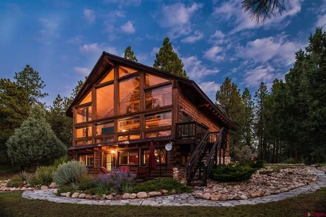 915 County Road 125, Hesperus, CO 81326 (MLS #786634) :: Durango Mountain Realty
