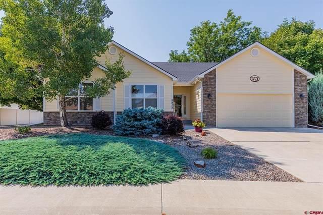2912 N Lost Creek Road, Montrose, CO 81401 (MLS #786666) :: The Howe Group   Keller Williams Colorado West Realty