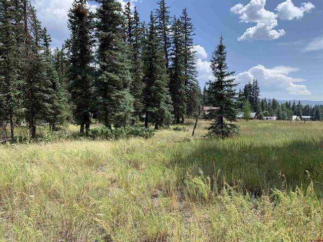 Lot 11 Ponderosa Lane, Vallecito Lake/Bayfield, CO 81122 (MLS #786720) :: The Howe Group | Keller Williams Colorado West Realty