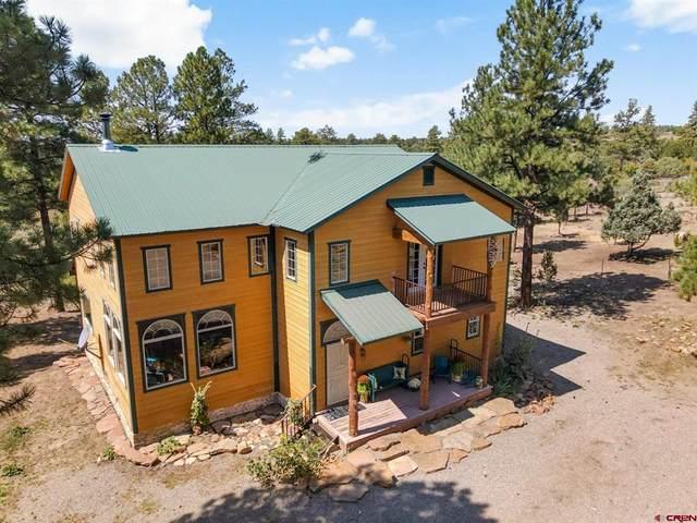 38798 Road N.3, Mancos, CO 81328 (MLS #786724) :: Berkshire Hathaway HomeServices Western Colorado Properties
