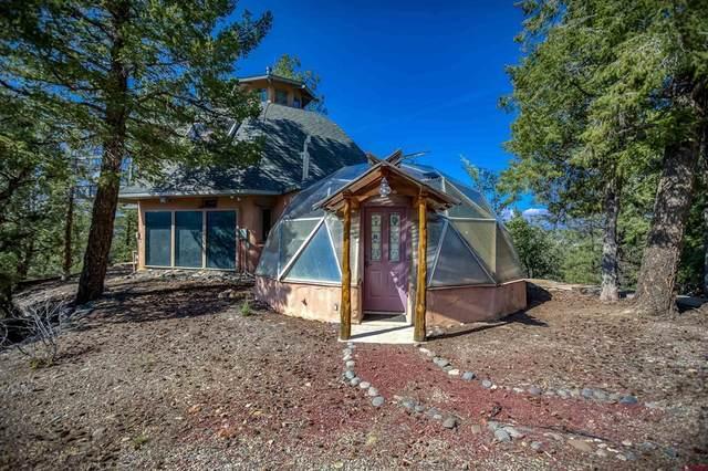 264 Lookout, Pagosa Springs, CO 81147 (MLS #786793) :: The Howe Group | Keller Williams Colorado West Realty