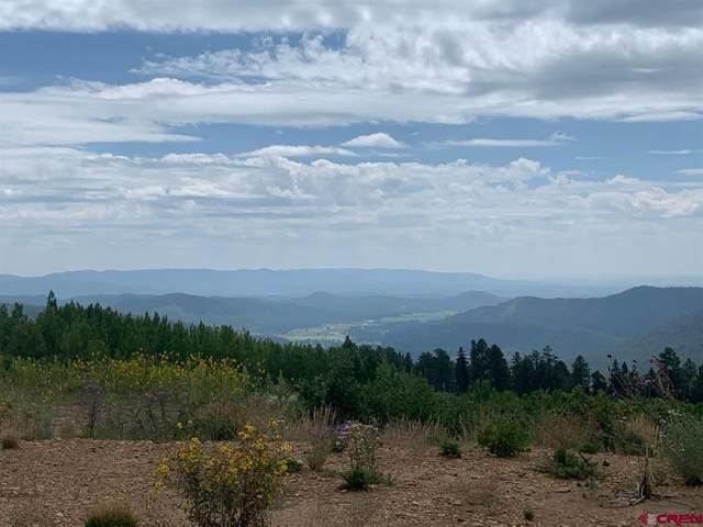 1485 Rosalie Drive, Durango, CO 81301 (MLS #786817) :: The Howe Group | Keller Williams Colorado West Realty