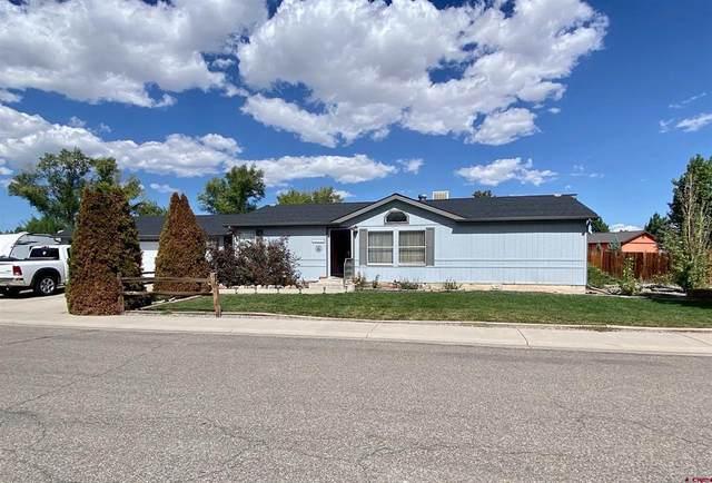 1315 Pitchfork Road, Montrose, CO 81401 (MLS #786861) :: The Howe Group | Keller Williams Colorado West Realty