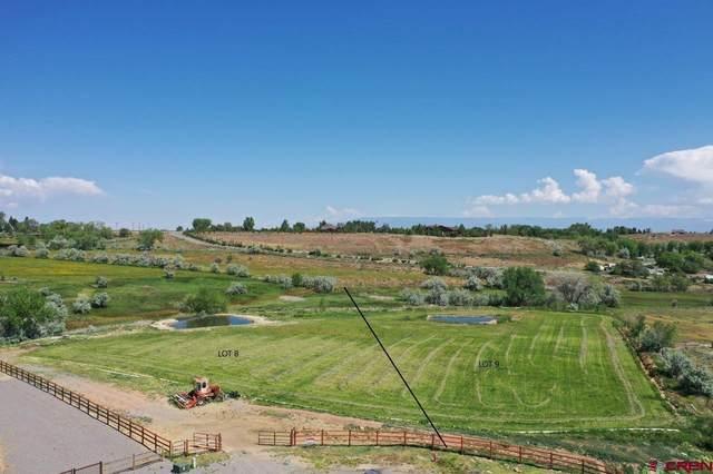 TBD LOT 9 Mallard Lane, Montrose, CO 81403 (MLS #787009) :: The Howe Group | Keller Williams Colorado West Realty