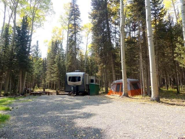 603 Hazel Lake Drive, Cimarron, CO 81220 (MLS #787022) :: The Howe Group | Keller Williams Colorado West Realty