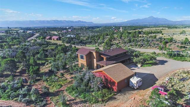 17590 Road 27.7, Dolores, CO 81323 (MLS #787082) :: The Howe Group | Keller Williams Colorado West Realty