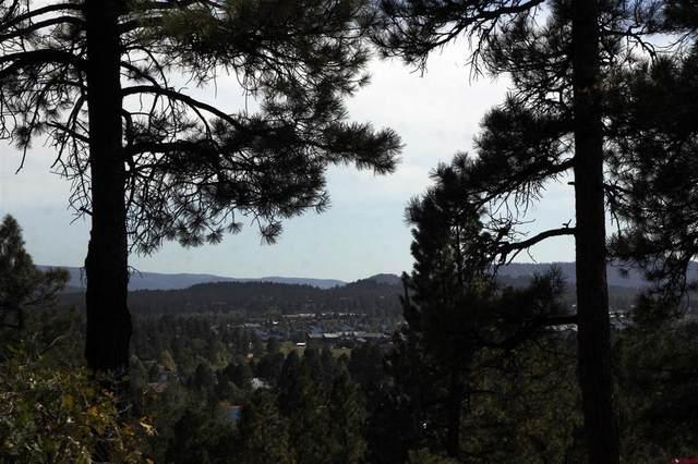 59 Steven's Lake Road, Pagosa Springs, CO 81147 (MLS #787130) :: Dawn Howe Group | Keller Williams Colorado West Realty