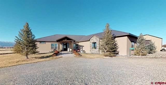 8370 2000 Road, Austin, CO 81410 (MLS #787170) :: The Howe Group | Keller Williams Colorado West Realty