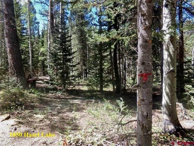 1050 Hazel Lake Drive, Cimarron, CO 81220 (MLS #787234) :: Berkshire Hathaway HomeServices Western Colorado Properties
