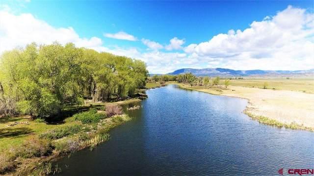 11398 County Road 15, Del Norte, CO 81132 (MLS #787235) :: Berkshire Hathaway HomeServices Western Colorado Properties
