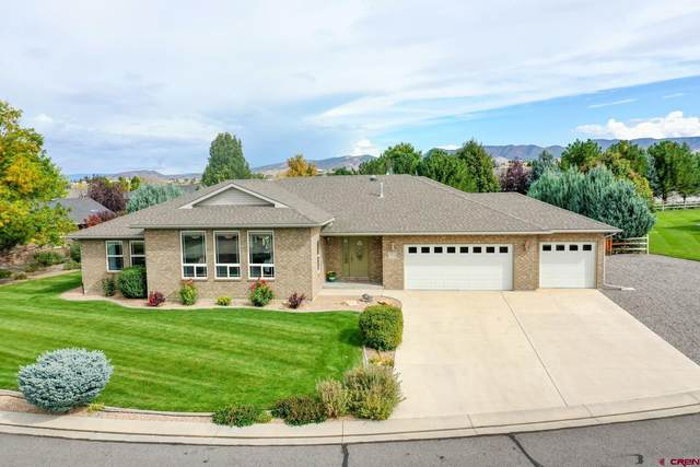 2941 Ivy Drive, Montrose, CO 81401 (MLS #787362) :: The Howe Group   Keller Williams Colorado West Realty