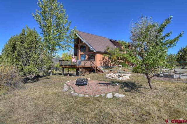 1180 Mariposa Drive, Durango, CO 81301 (MLS #787466) :: Durango Mountain Realty