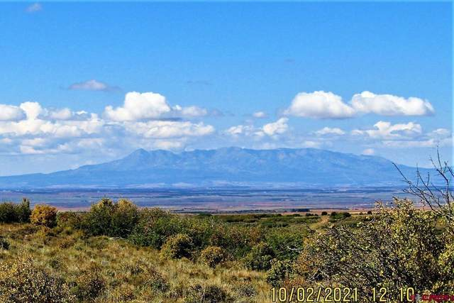 5505 Road 9.4, Dove Creek, CO 81324 (MLS #787470) :: The Howe Group   Keller Williams Colorado West Realty