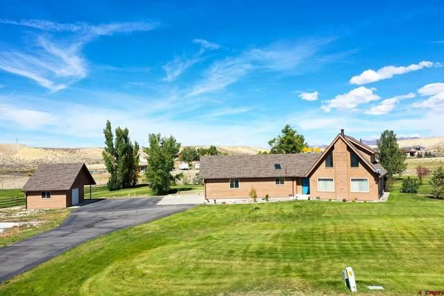 68911 Open Field Drive, Montrose, CO 81401 (MLS #787558) :: The Howe Group | Keller Williams Colorado West Realty