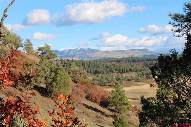 1580 Shenandoah, Pagosa Springs, CO 81147 (MLS #787583) :: The Howe Group   Keller Williams Colorado West Realty