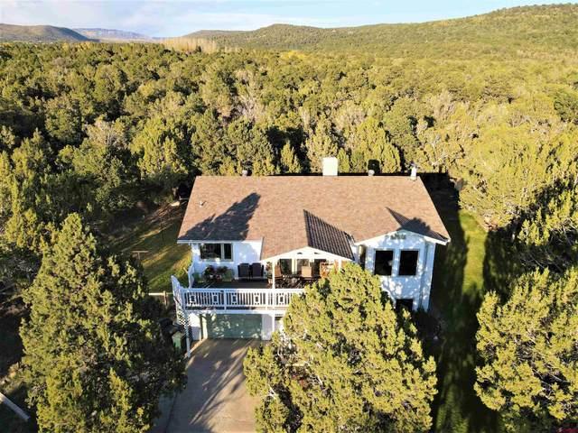 19096 Pinon Drive, Cedaredge, CO 81413 (MLS #787589) :: The Howe Group | Keller Williams Colorado West Realty