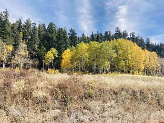 130 Red Bluff Drive, South Fork, CO 81154 (MLS #787615) :: The Howe Group | Keller Williams Colorado West Realty