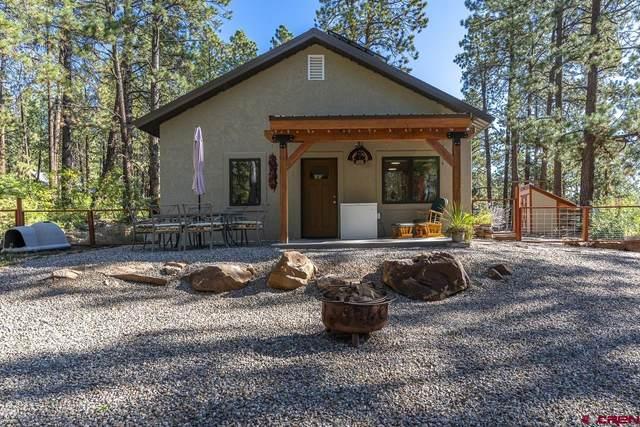 149 Elk Lane, Durango, CO 81301 (MLS #787618) :: The Howe Group | Keller Williams Colorado West Realty