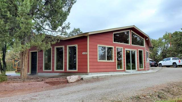 1119 Cr 220, Durango, CO 81303 (MLS #787802) :: Durango Mountain Realty