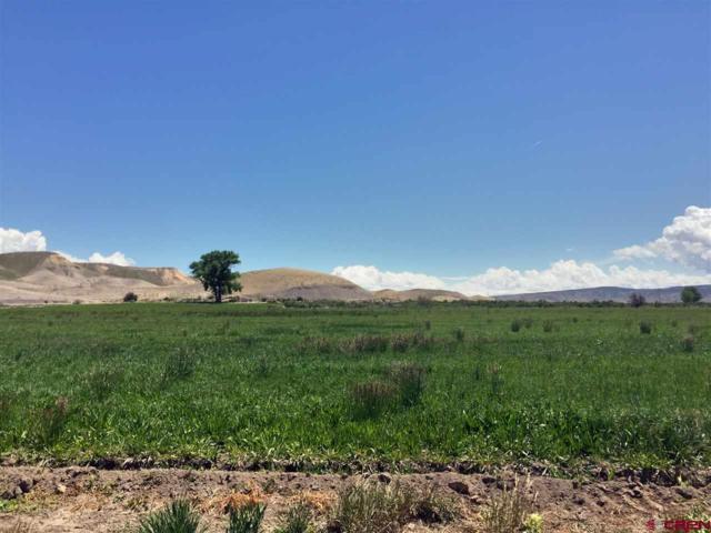 Lot #6 Stirrup Creek Road, Delta, CO 81416 (MLS #606612) :: The Dawn Howe Group | Keller Williams Colorado West Realty