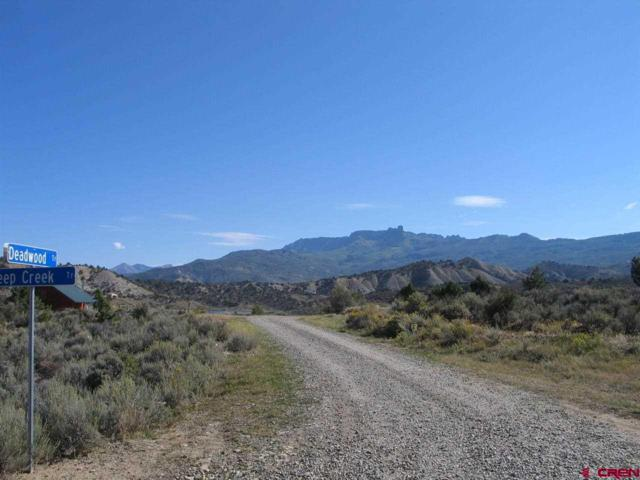 Tract # 61 Cathedral Peak Ranch Road, Crawford, CO 81415 (MLS #676391) :: CapRock Real Estate, LLC
