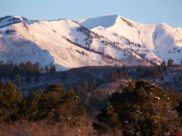 330 Las Montanas Ln, Hesperus, CO 81326 (MLS #693653) :: Durango Mountain Realty