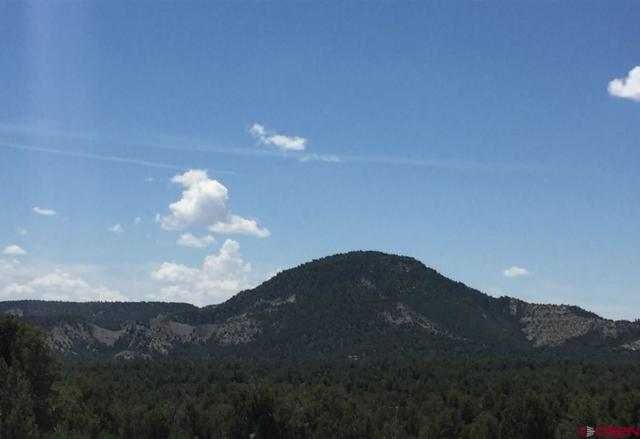 TBD Rancho Durango, Durango, CO 81301 (MLS #706734) :: Durango Mountain Realty