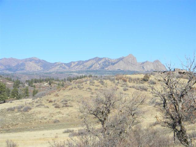 446 Henrys Lake, Pagosa Springs, CO 81147 (MLS #727119) :: The Dawn Howe Group   Keller Williams Colorado West Realty