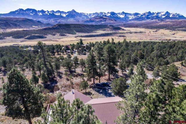 1258 Catamount Drive, Ridgway, CO 81432 (MLS #727127) :: Durango Home Sales