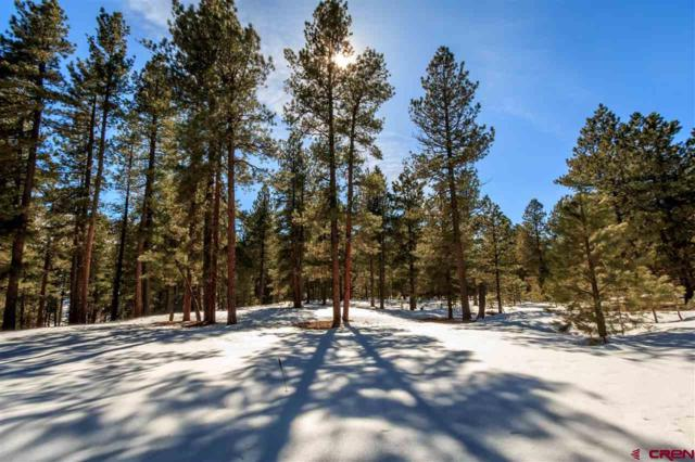67 Red Bluff Road Drive, Vallecito Lake/Bayfield, CO 81122 (MLS #729077) :: The Dawn Howe Group   Keller Williams Colorado West Realty