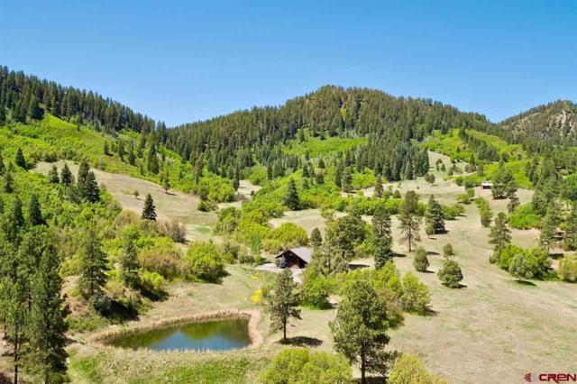 147 Sunrise Lane, Durango, CO 81301 (MLS #730817) :: CapRock Real Estate, LLC